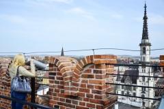 Widok z korony Krzywej Wieży